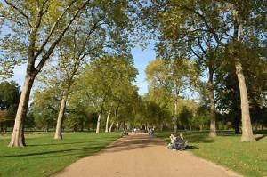 Siang hari di taman